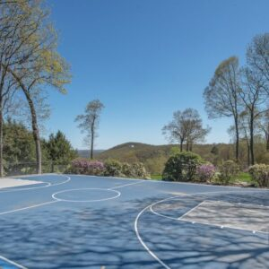 5 extraordinary homes for olympic sports fans and fantasy olympians
