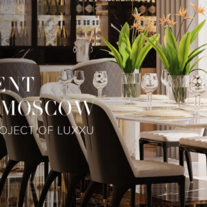 admire luxxus newest deluxe apartment in the heart of moscow