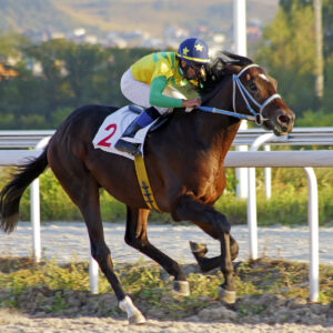 the top 10 most famous racehorses
