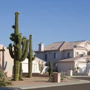 living in phoenix arizona one of the largest cities in the usa