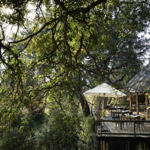 a majestic stay at the magnificent royal malewane